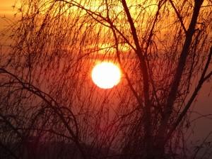 1-9ルクセンブルクの朝陽