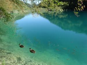 1-6プリットヴィッチェ湖